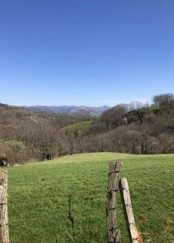 traveling steps basque landscape