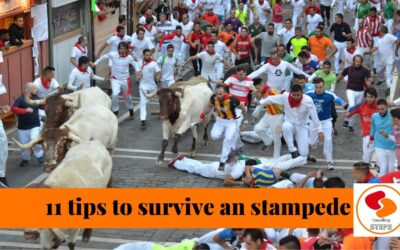 Try to survive the running of the bulls