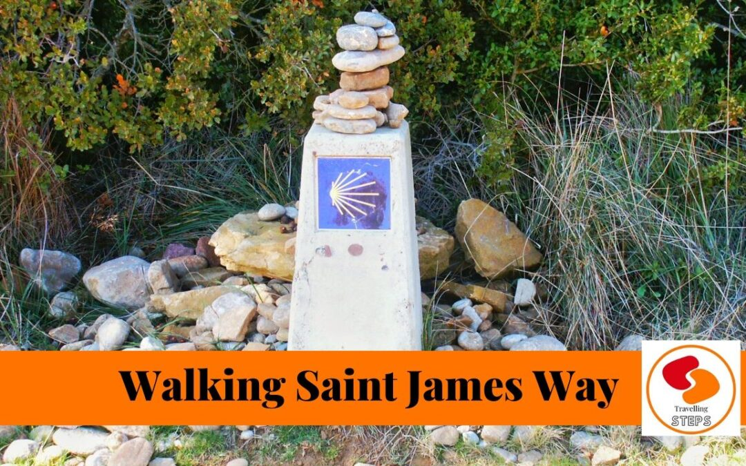Walking the CAMINO will change your life