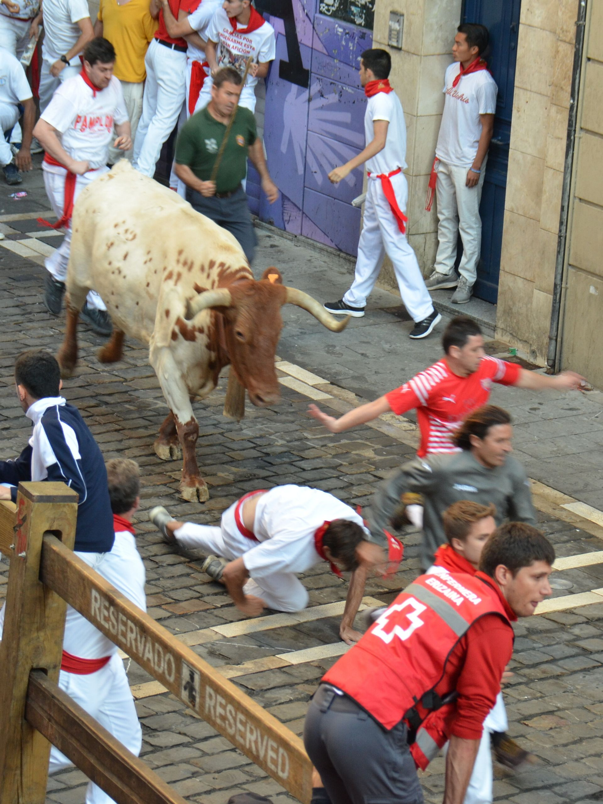 traveling steps running of the bulls
