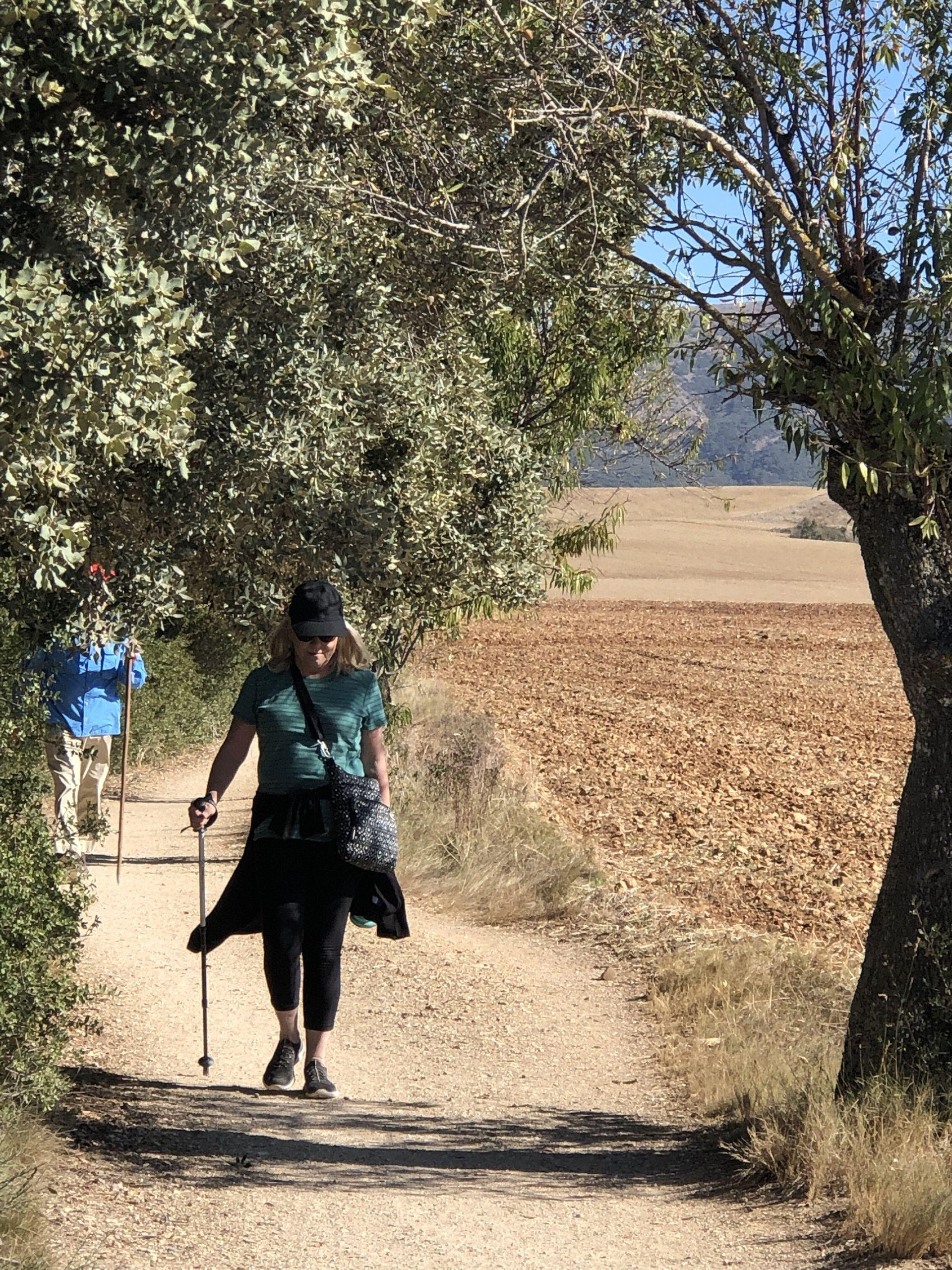 traveling steps camino walk