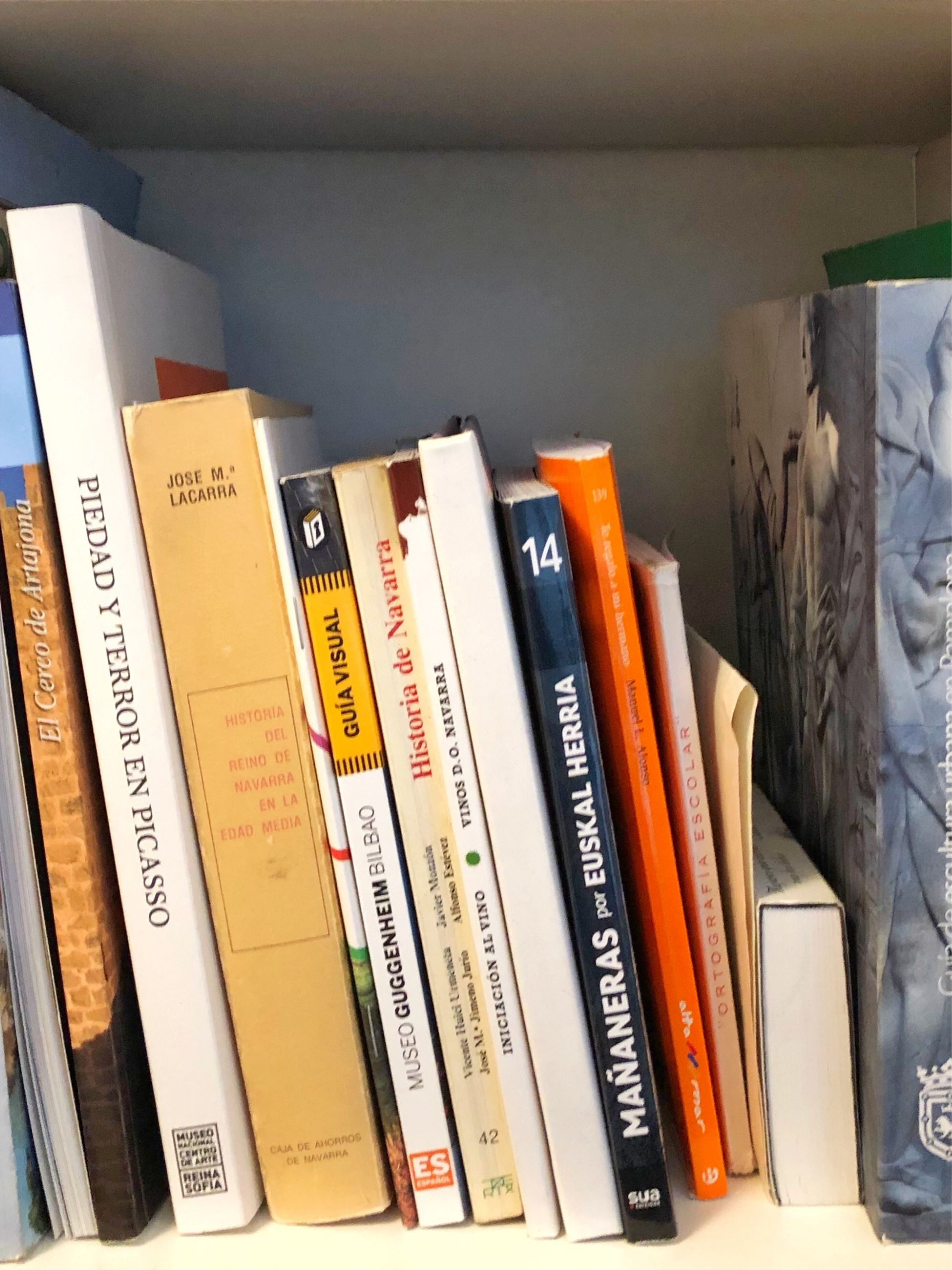 traveling steps books
