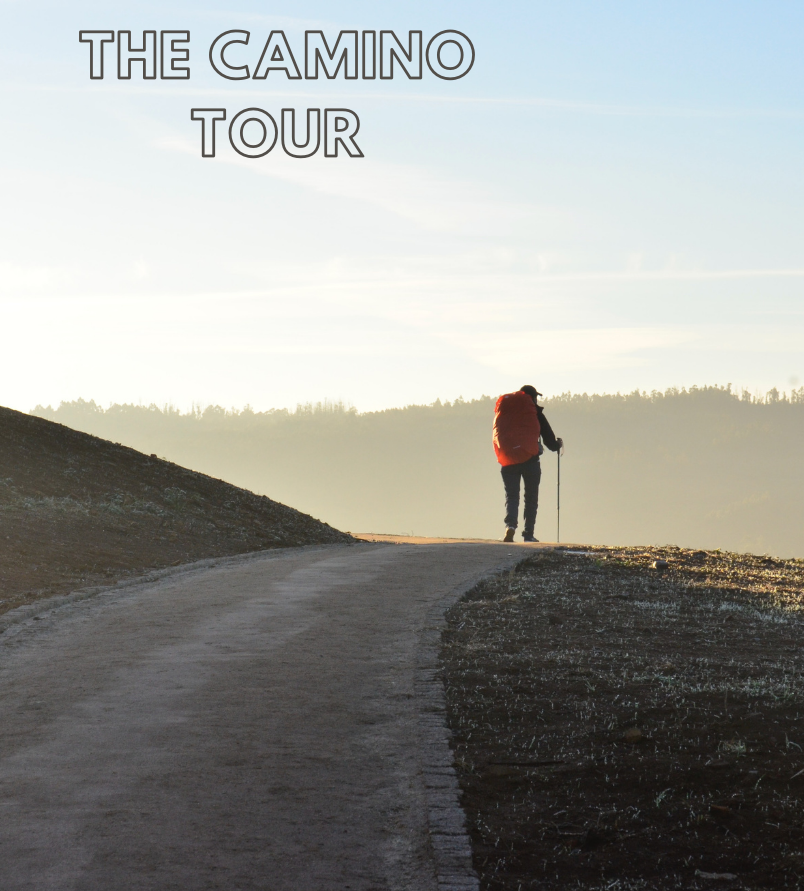 traveling steps camino