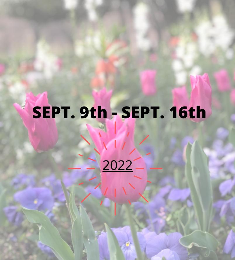 traveling steps dates 2022
