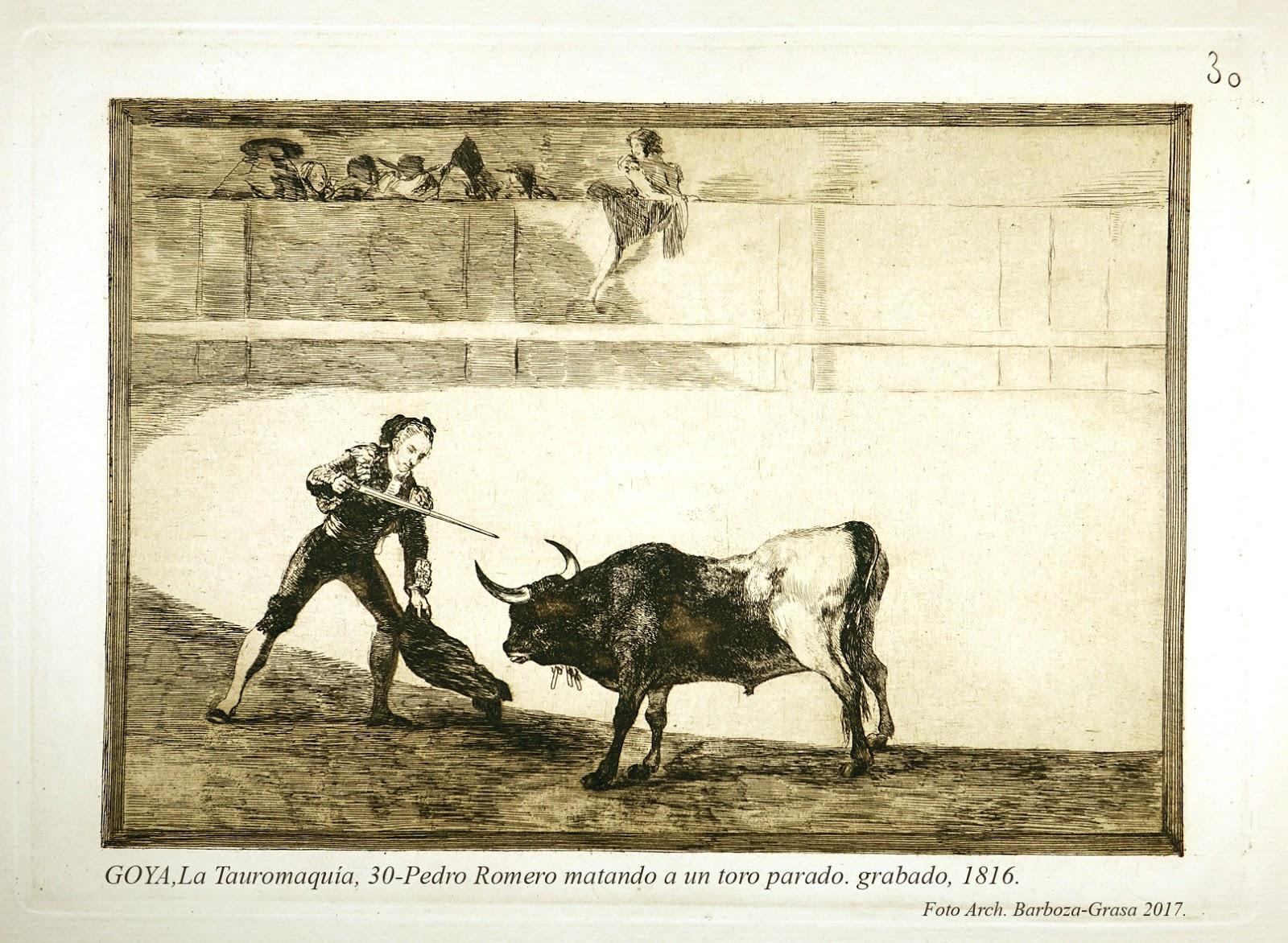 TS Goya